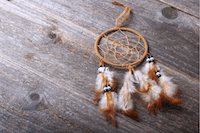 shutterstock_1185323896_dream catcher copy